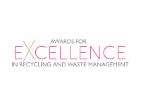 Second Awards for Excellence nomination